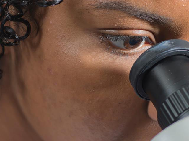 A biology student is studying micro-organisms through a scope. For work in this field, an undergraduate bachelor's degree program in biology is offered through the department of biology. Students interested in the undergraduate biology major can learn more about biology careers, salaries and jobs, and the biology major curriculum.
